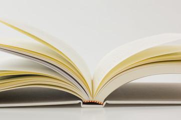 本のアップ