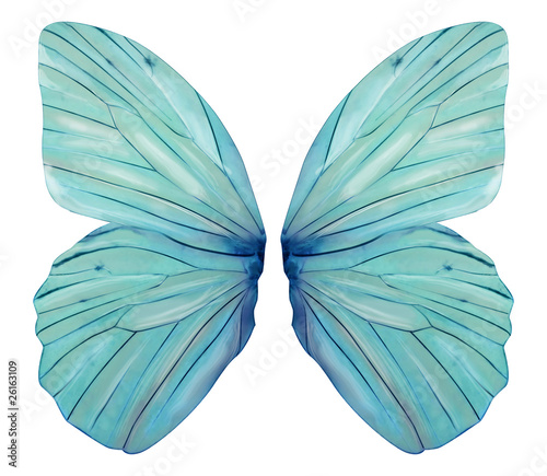 Fairy Wings - 26163109