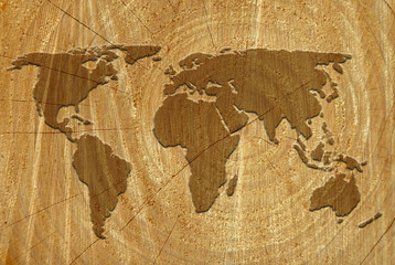 World map on wood surface