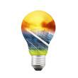 Solar panel bulb