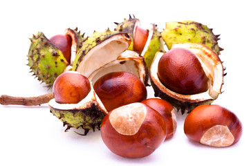 Chestnuts with open husk