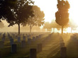 Leinwanddruck Bild - Cemetery in the Fog