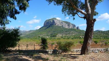 Mallorca Mountain