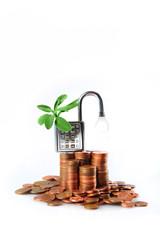 soldi puliti e sicuri