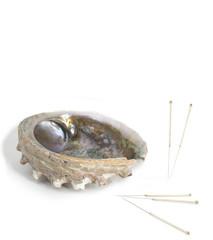 Akupunkturnadeln mit Muschel