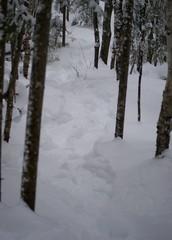 Piste de neige