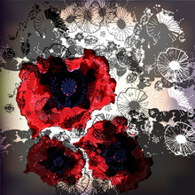 glittering poppies on a lace background
