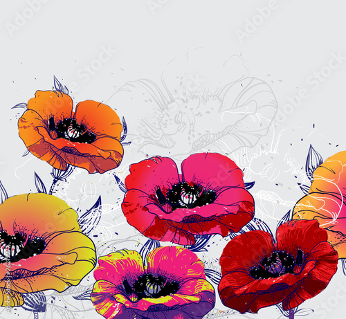 Fototapeta summer field with blossoming poppies