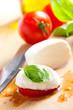 fresh mozzarella with tomato and basil