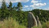 Carpathian scenic landscape with rocks, fir forest and grass