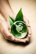 concept écologie planète terre nature
