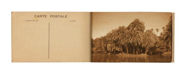 14 Postcard Album
