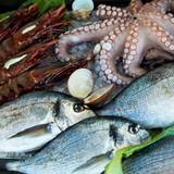 Fototapeta Seafood