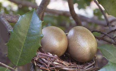 Golden Nest Eggs As Nature Intended