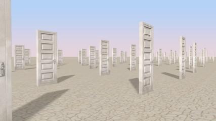 Doors in the desert