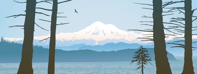 Mount Baker, Washington State panoramic
