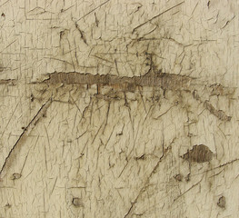 damaged scratched wood with a thin layer of white paint