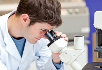 Assertive male scientist looking through a microscope