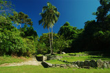 Pueblito: Ruins of an ancient settlement of the Tayrona poster