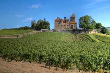Chateau de Pierreclos, Burgundy, France