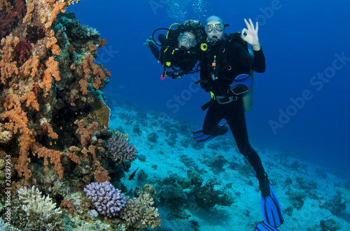 scuba divers give OK sign