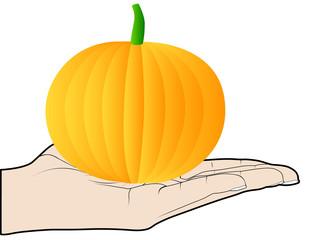 human hand offer an pumpkin