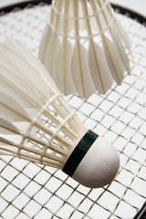 Badminton shuttlecocks on the racket