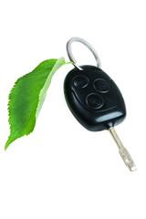 Car key with green leaf.
