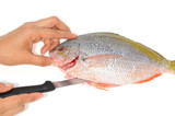 Preparing A Saltwater Fish For cooking poster
