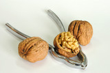 Walnut with pincers poster