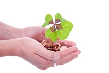 moneytree grows in hands