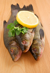 Raw tench with lemon and parsley on wooden background