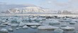 Arctic winter panorama landscape