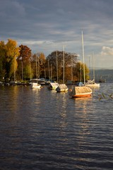Boote am herbstlichen Zürichsee
