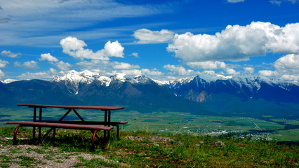 A bench with a view