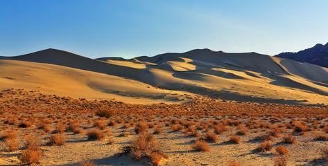 Magnificent sandy dune Eureka on sunrise