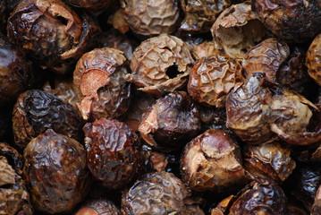 coquilles de noix ritha de l'Himalaya avant lavage