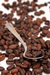 cuillère de grains de café