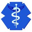 Medici Stab