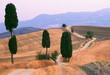 Weg zwischen Zypressen Toskana Monte Amiata