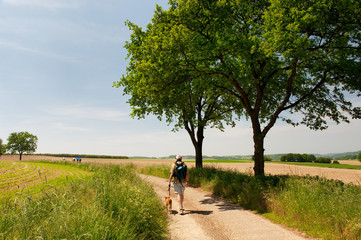 Dutch landscape with walking man