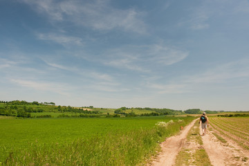 Dutch landscape with walking man