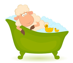 Cartoon sheep in bath is isolated on white background