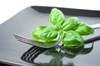 Light diet: basil leaves set with fork