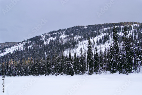Western Sayan mountains. Ergaky. Siberia. Russia in winter time