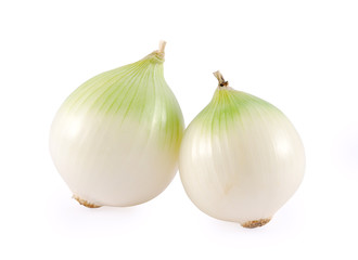 two white onion bulb isolated on white background