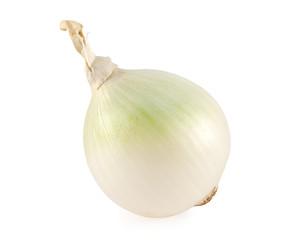 white onion bulb isolated on white background