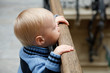 Little boy stands at fencing holding on to banister