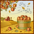 roleta: Landscape with apple harvest