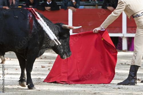 Leinwandbild Motiv corridas